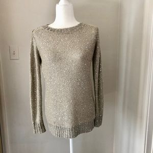 Oyster Sequined Crew neck long Sweater